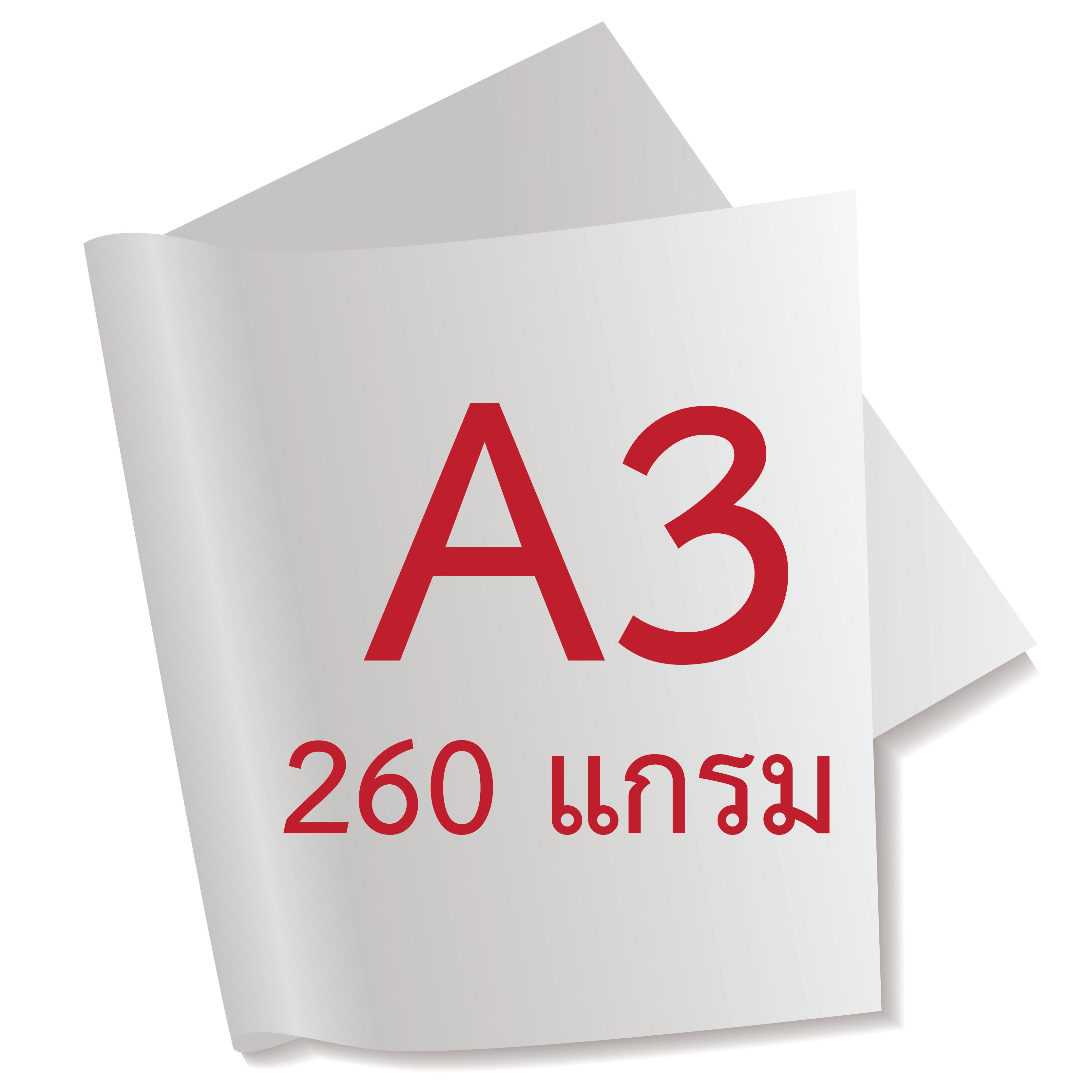 กระดาษอาร์ตการ์ดมัน 2 หน้า 260 แกรม/A3 (500 แผ่น)