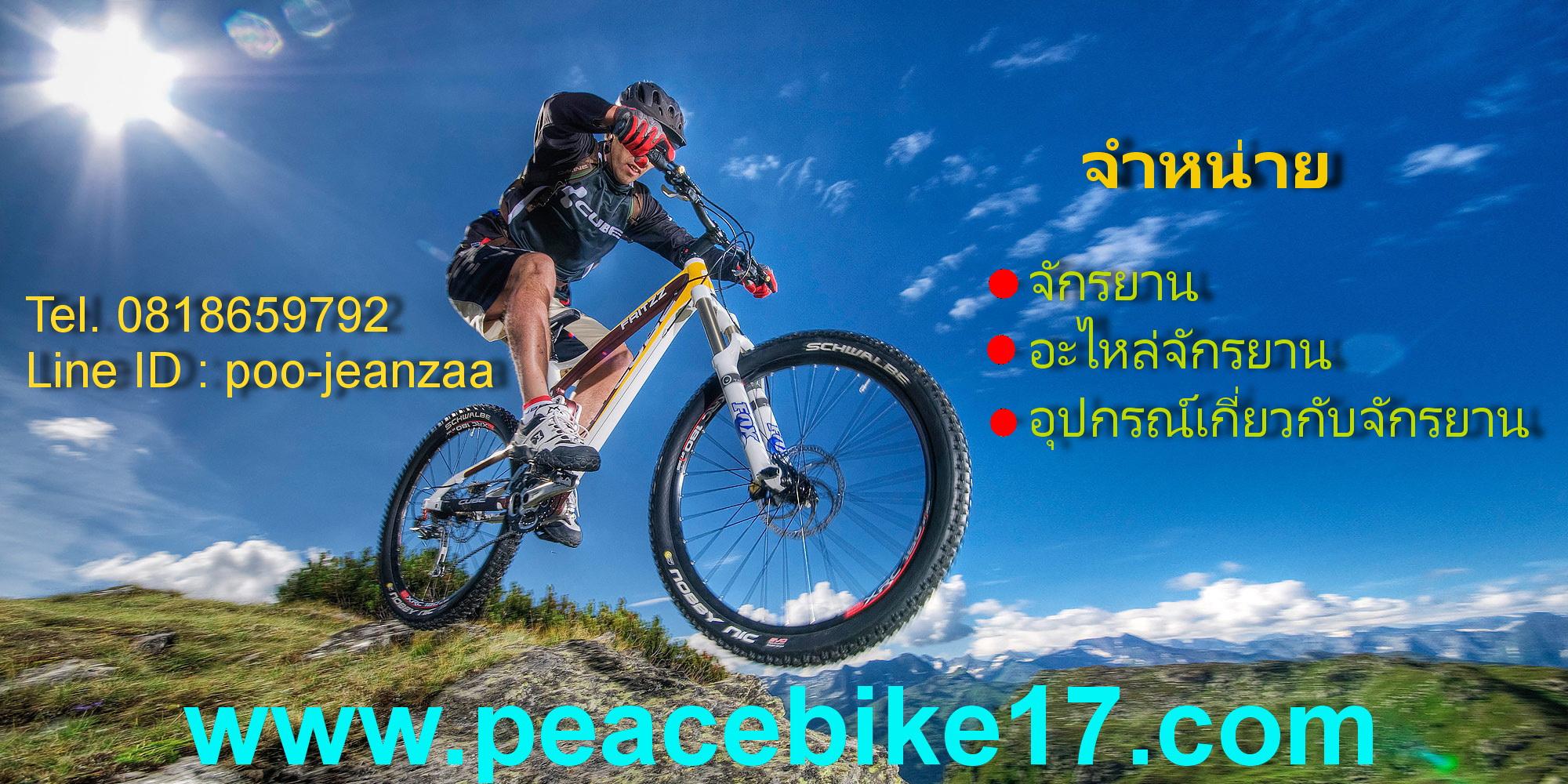 Peace Bike17