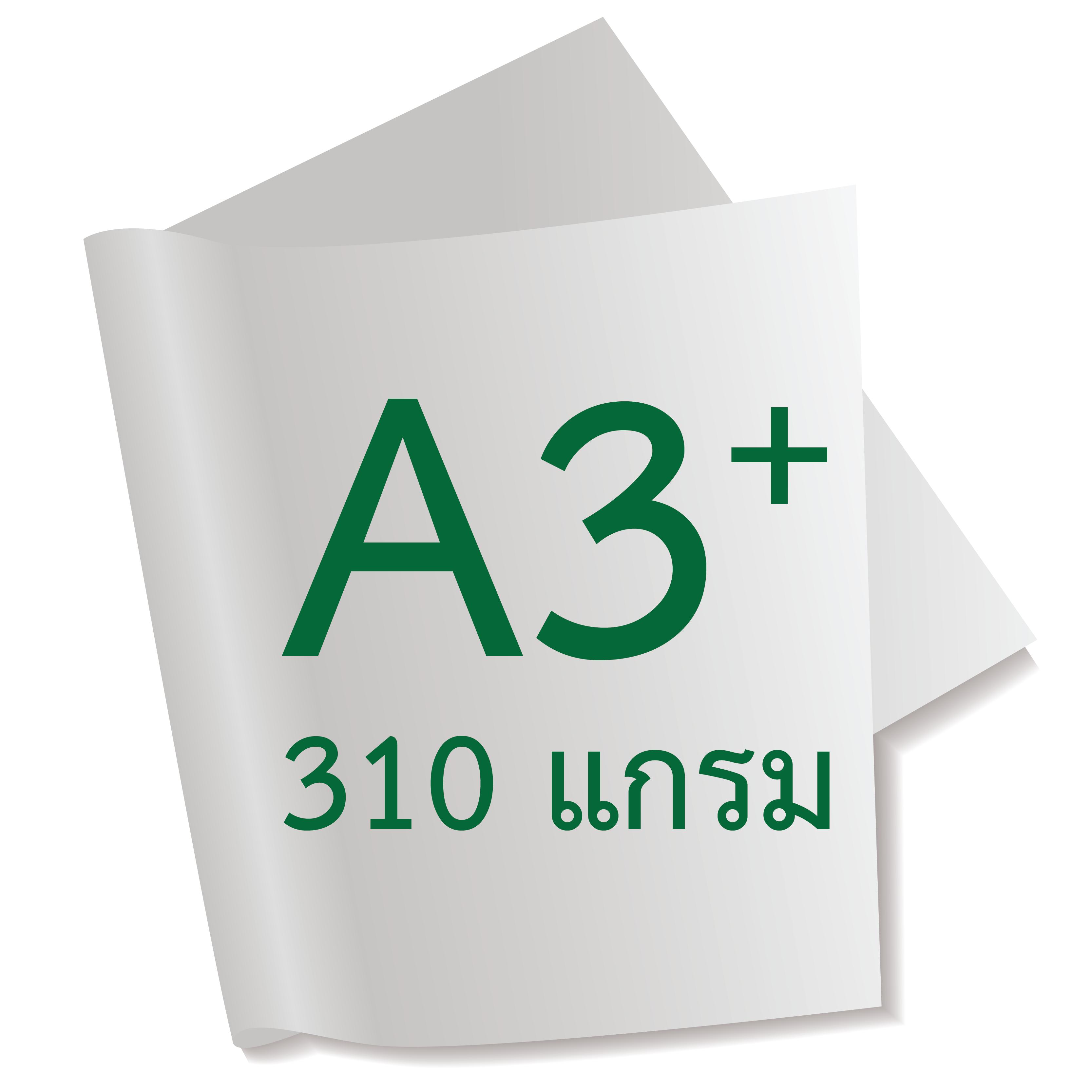 กระดาษอาร์ตการ์ดมัน 2 หน้า 310 แกรม/A3+ (500 แผ่น)