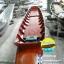 เรือไม้สักทอง ยาว 6 เมตร (ส่งทั่วประเทศ) thumbnail 3