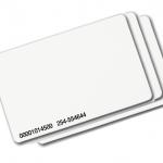 บัตร 0.8 (ใบล่ะ)