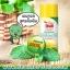 แป้งเต่าเหยียบโลก ผงระงับกลิ่นกาย ตราเต่าเหยียบโลก (ฝาเหลือง) สูตรดั้งเดิม กลิ่นเมนทอล thumbnail 2