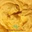 ครีมกันแดด ซิลิโคนเนื้อมูสนุ่ม มี 4 สี ขนาด 100 กรัม thumbnail 3